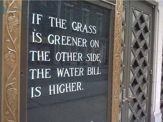 Breaking into a New role: Is the Grass Greener? if-the-grass-is-greener-on-the-other-side