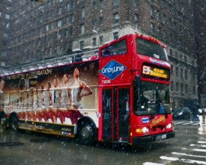 Double Decker In The Snow