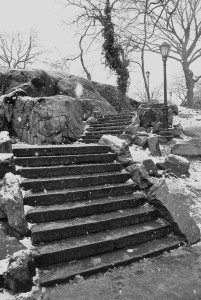 Central Park Steps In The Snow