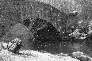 Central Park Bridge In The Snow