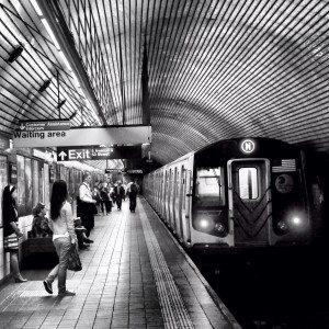 The N Train