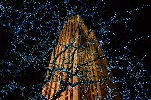 30 Rockefeller Center Through Tree Lights