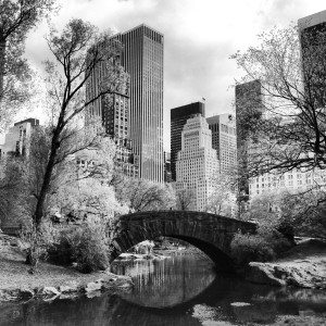Central Park in Black and White