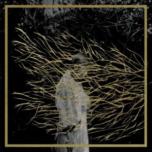 FOREST-SWORDS-ENGRAVINGS-575x575