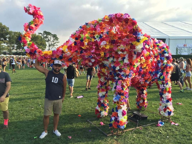 James Teal, Ryan Shea, Manhattan Digest, Electric Zoo Festival